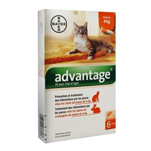 ADVANTAGE II GRAND CHAT 4PQT 4KG